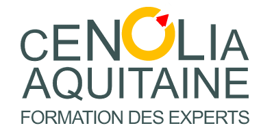 Formation des Experts
