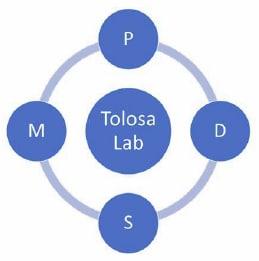 Logo Tolosa Lab